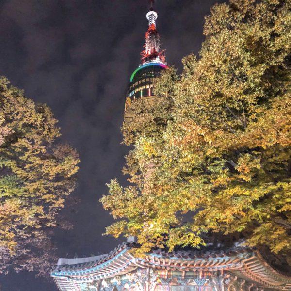【Nソウルタワー】で韓国ドラマのようにロマンチックな夜景一望!想像以上に見どころいっぱい