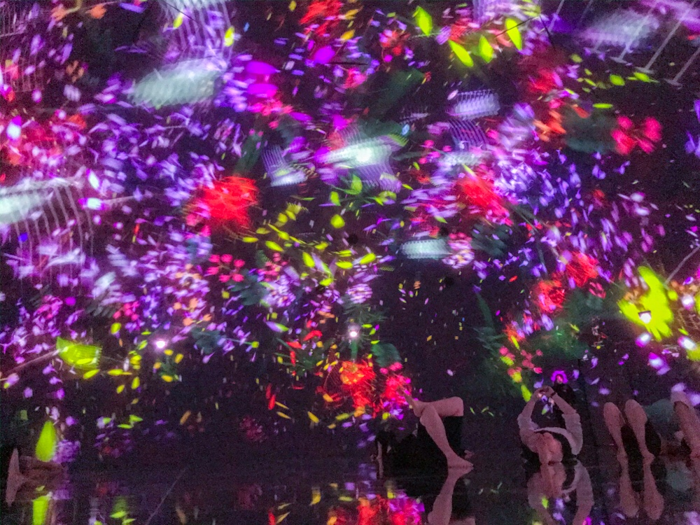 Teamlab Planets-Floating in the Falling Universe of Flowers